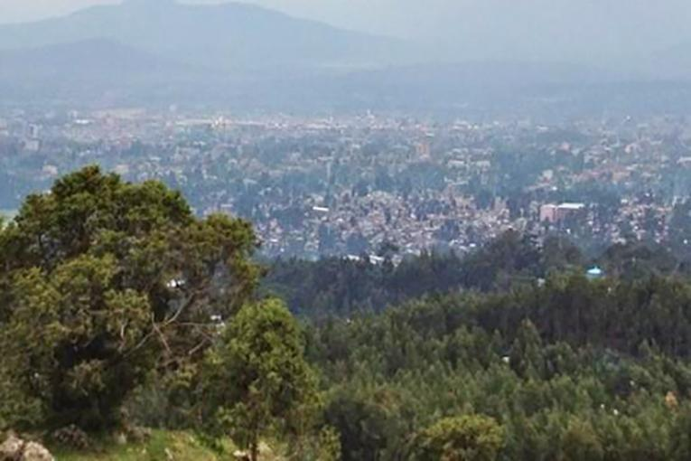 Image result for entoto mountain